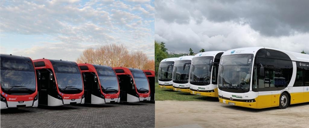 market share electric bus maker