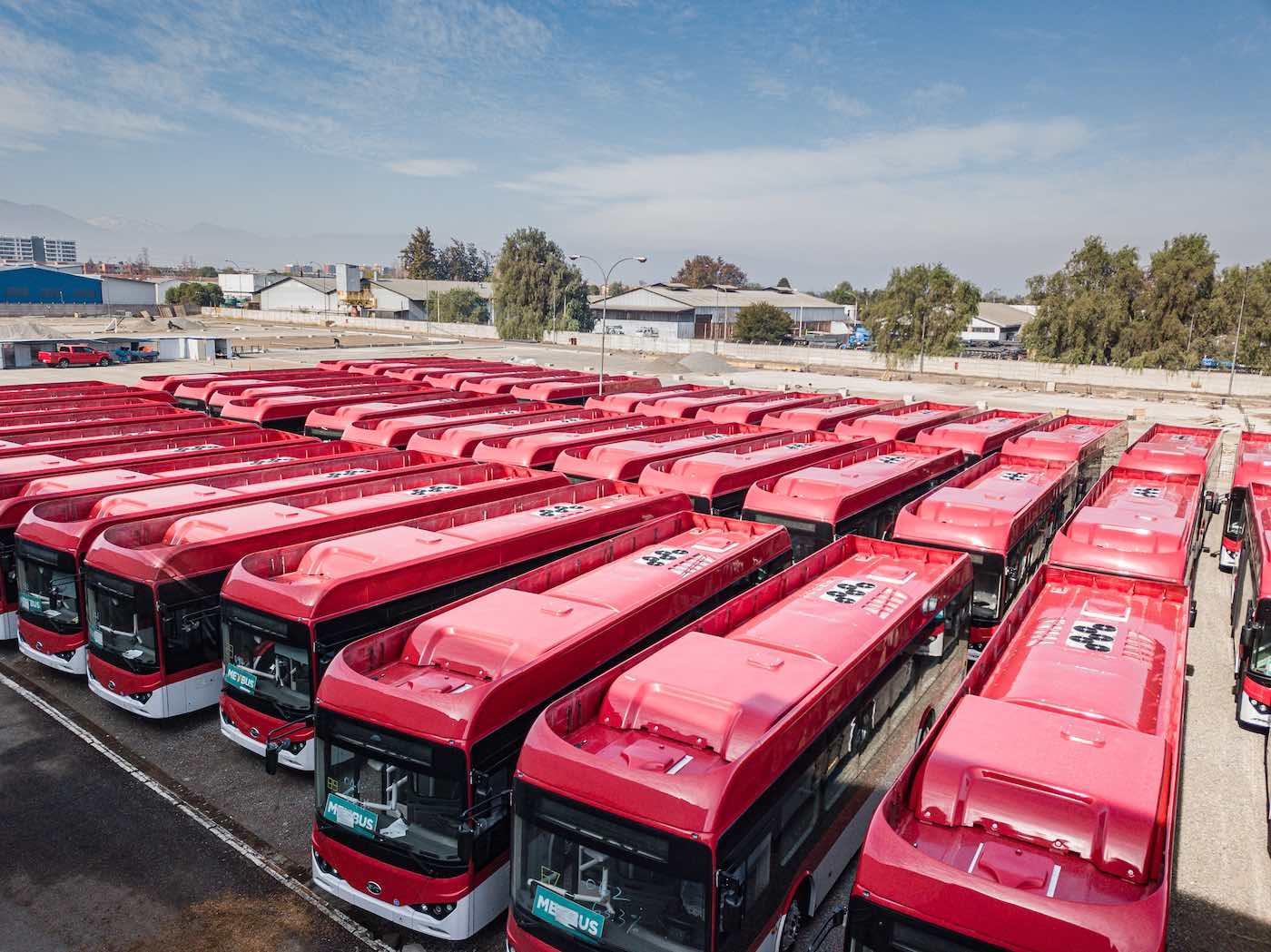 byd electric buses metbus